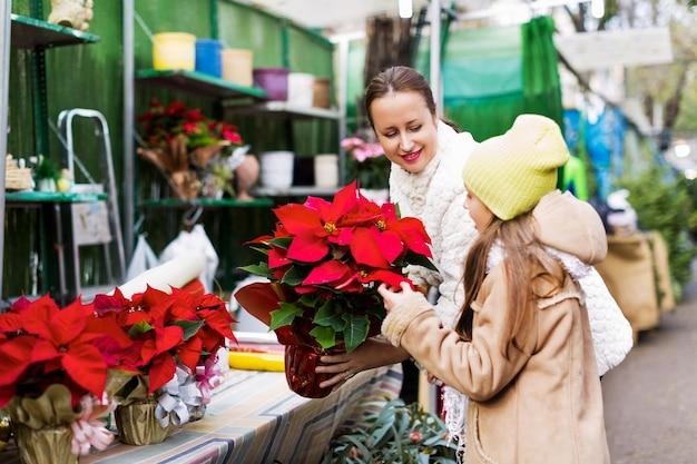 Femme avec une fille en regardant les fleurs d'euphorbia pulcherrima