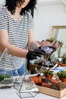 Femme fleuriste transplantation succulentes dans des florariums en verre avec composition d'art botanique décor