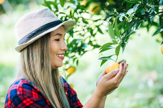 Femme havesting orange plantation