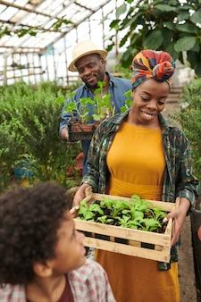 Femme heureuse africaine portant une boîte avec des semis tout en faisant pousser des légumes dans la serre avec sa famille