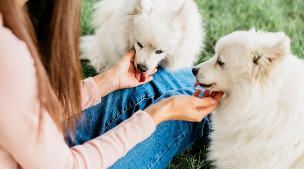 Femme heureuse de jouer avec des chiens mignons