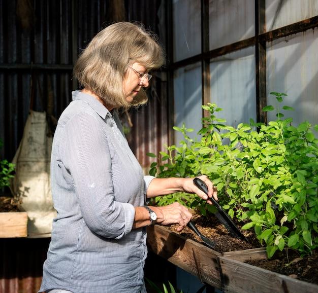 Femme, jardinage, à, outils