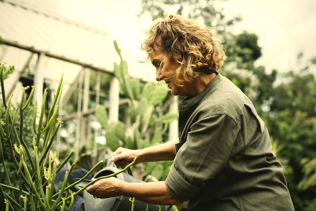 Femme, jardinage, serre
