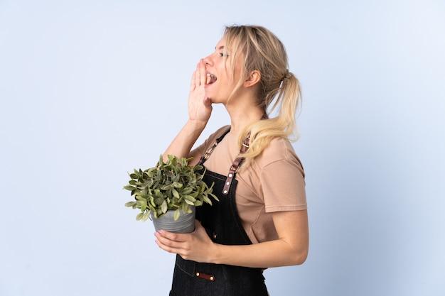 Femme de jardinier blonde tenant une plante sur un mur isolé en criant avec la bouche grande ouverte
