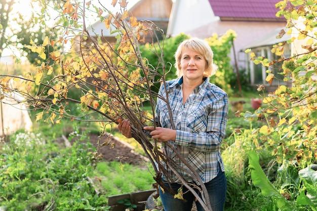 Une femme en jeans et chemise enlève des branches dans le jardin. une femme d'âge moyen dans l'arrière-cour récolte des légumes délicieux et sains.