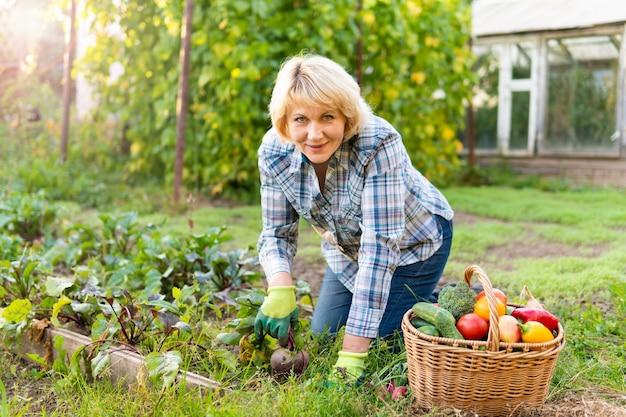 Femme avec des légumes frais dans un panier dans le jardin en automne