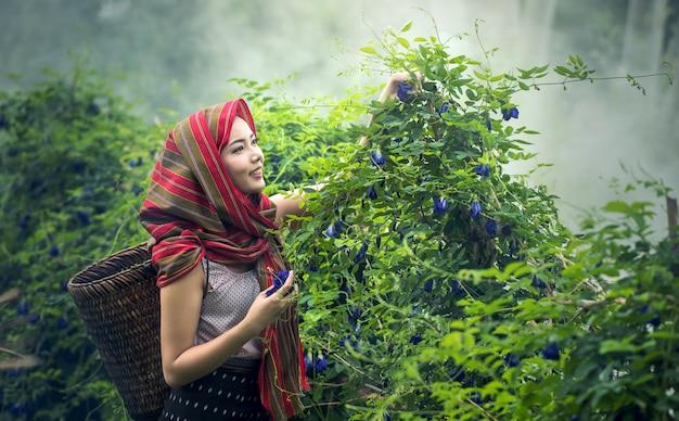 Femme locale thaïlandaise travaillant