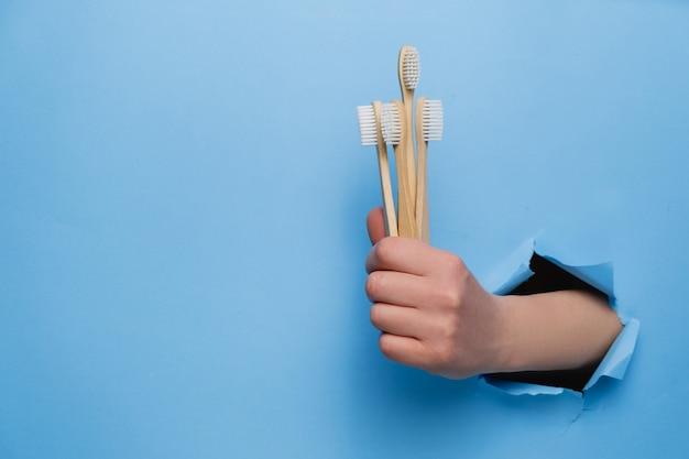 Femme main tenant des brosses à dents en bambou eco à travers un mur de papier bleu déchiré.