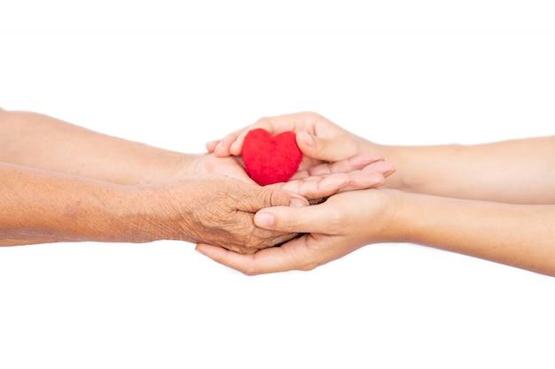 Femme main tenant mini coeur, faites attention au concept de santé.