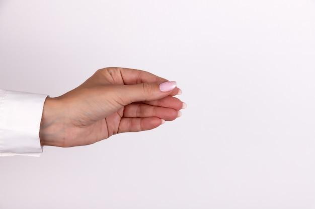 Femme main tenir carte de crédit de carte de visite virtuelle ou papier vierge isolé sur fond blanc