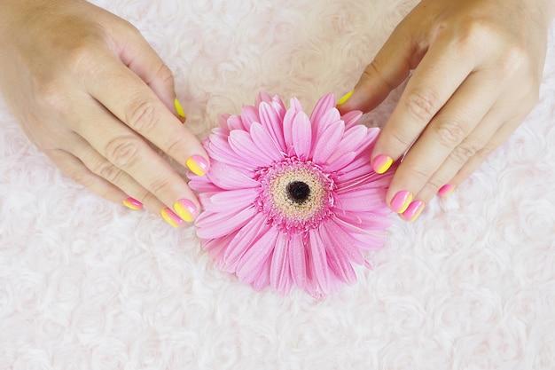 Femme mains avec une manucure dégradé rose-jaune vif