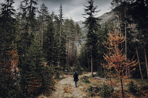 Femme marchant sur un sentier dans une forêt sombre et verte