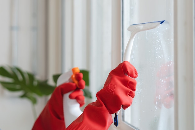 Femme de ménage nettoyage concept maison. femme, pulvérisation, nettoyant, à, fenêtre