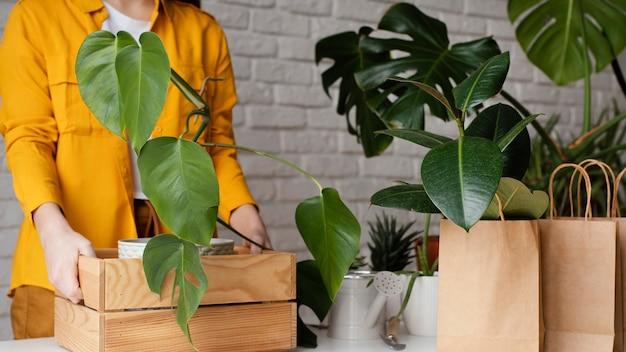Femme mettant une plante dans une boîte en bois