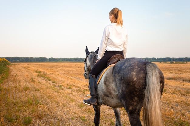 Femme montant un cheval gris dans un champ au coucher du soleil. équitation, location, beau fond, gîte. amitié et amour des gens et des animaux. animal de compagnie. sport équestre. blé et tournesols
