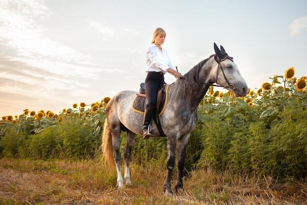 Une femme montant un cheval gris dans un champ au coucher du soleil. promenades, équitation, location. beau fond, nature en plein air. formation aux sports équestres. espace de copie. dressage