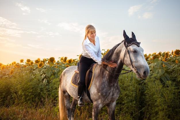 Une femme montant un cheval gris dans un champ au coucher du soleil. promenades, équitation, location. beau fond, nature en plein air. formation aux sports équestres. espace de copie. une femme caresse un animal