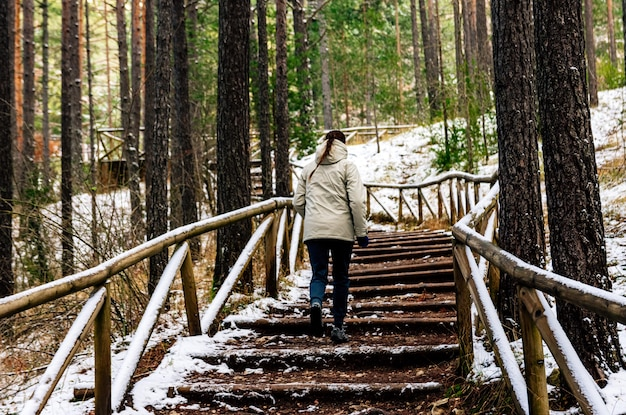 Femme montant un escalier en bois dans un paysage enneigé.