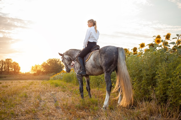 Une femme monte un cheval gris dans un champ au coucher du soleil. liberté, beau fond, amitié et amour pour l'animal. entraînement sportif équestre, location et vente de chevaux, randonnées, équitation, promenades.