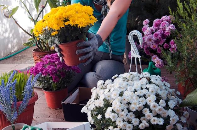 Femme, planter, fleurs, dans, terrasse, jardin