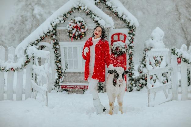 Femme posant avec jeune taureau noir et blanc sur le ranch de noël avec décor de vacances. il neige.