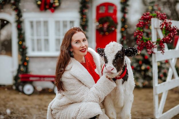 Femme posant avec jeune taureau noir et blanc sur le ranch de noël avec décor de vacances.