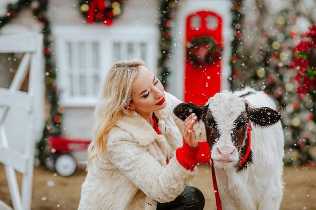 Femme posant avec jeune taureau sur le ranch de noël avec décor de vacances. neige