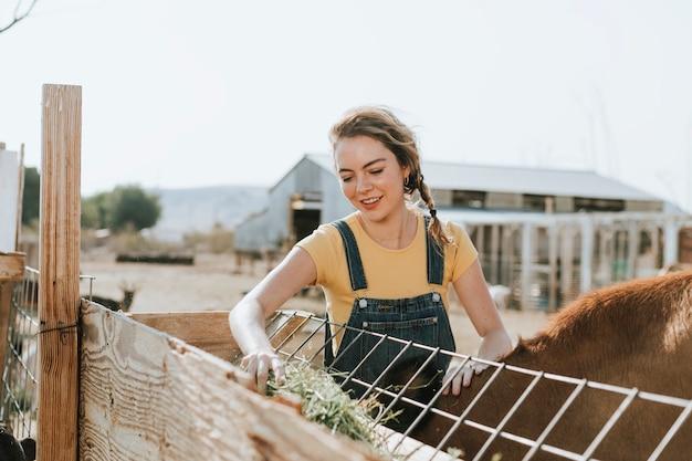 Femme prenant soin des animaux, le sanctuaire de soledad