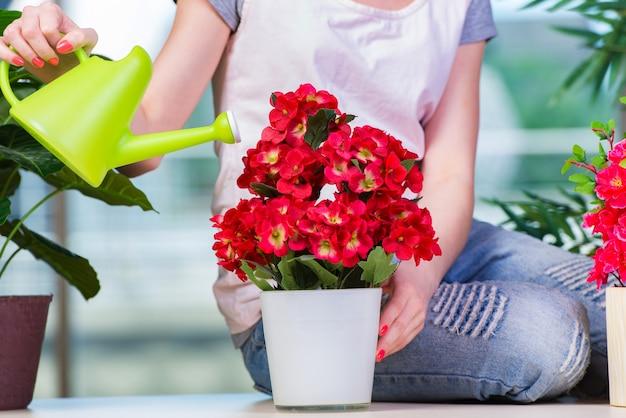 Femme prenant soin des plantes de la maison