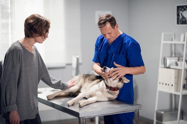 Une femme propriétaire avec son animal de compagnie vétérinaire en visite pour obtenir de l'aide et des conseils.