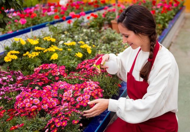 Femme, pulvérisation, fleurs, serre