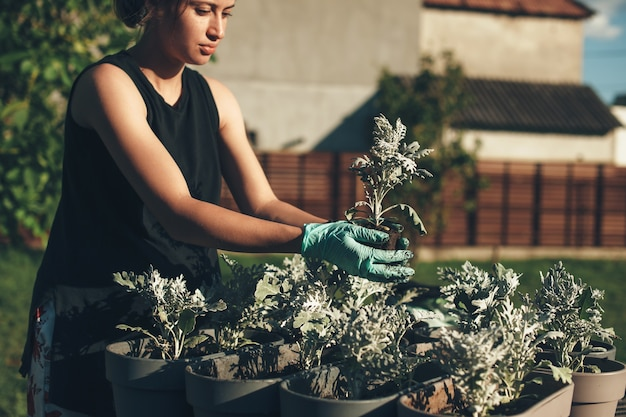 Femme de race blanche concentrée en pot des fleurs à la maison à l'extérieur à l'aide de gants dans une journée d'été ensoleillée