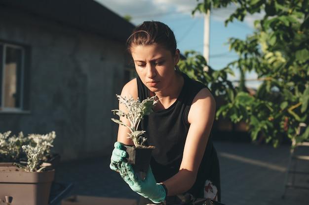 Femme de race blanche avec des taches de rousseur se concentre sur la plantation de fleurs en pot à l'extérieur dans la cour