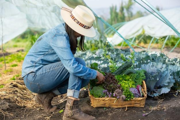 Femme ramassant des légumes