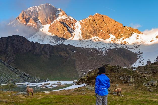 Femme regardant le lever du soleil sur les alpes dans la vallée d'aoste, italie