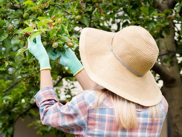 Femme regardant des plantes dans son jardin