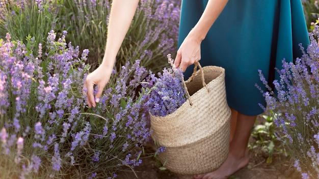 Femme relâche, dans, fleur, champ