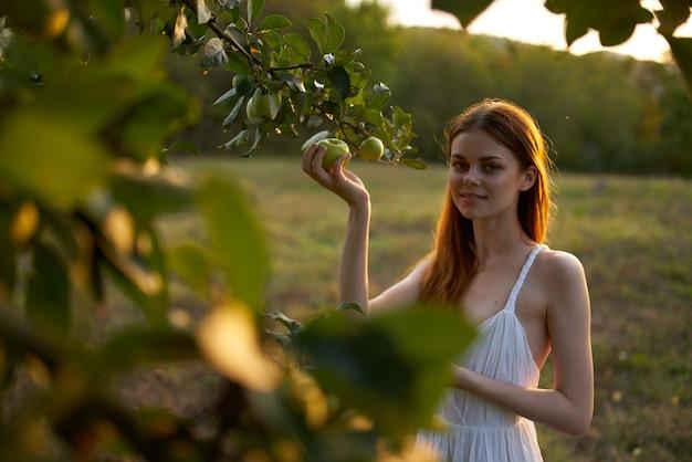 Une femme en robe blanche cueille des pommes d'un arbre dans un champ naturel. photo de haute qualité