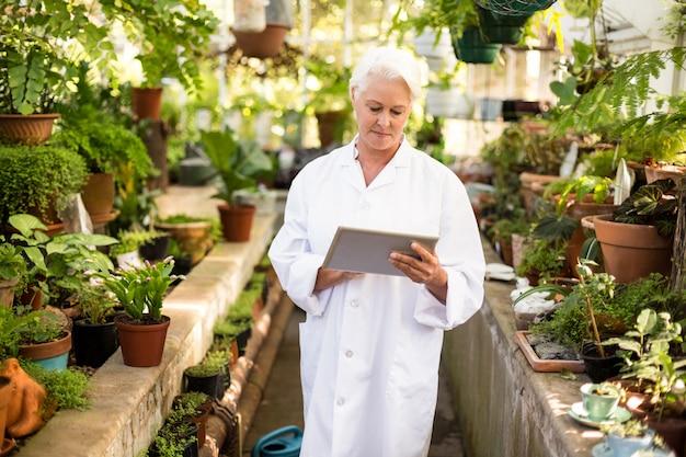 Femme scientifique à l'aide de tablette numérique au milieu des plantes
