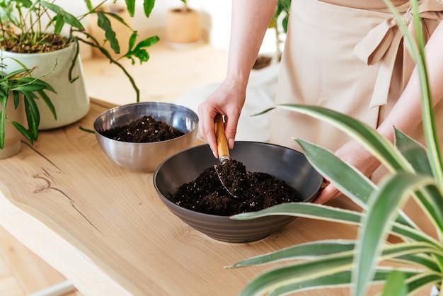 Femme se préparant à replanter des plantes à l'intérieur. creuser le sol dans un bol se bouchent