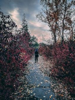 Femme se promène dans le parc par temps nuageux à l'automne.