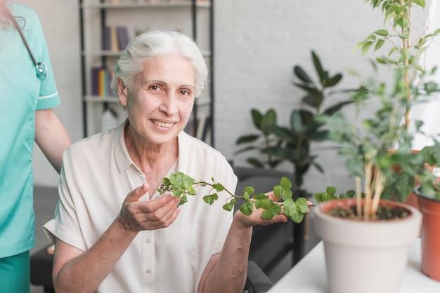 Femme senior souriante tenant le lierre croissant dans le pot