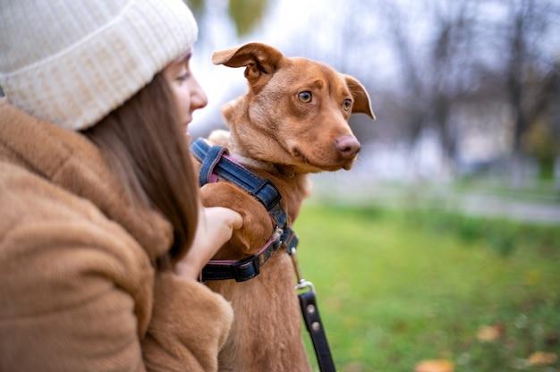 Femme avec son chien à l'automne dans un parc. les pattes du chien dans les mains de la femme, elle le regarde et sourit.
