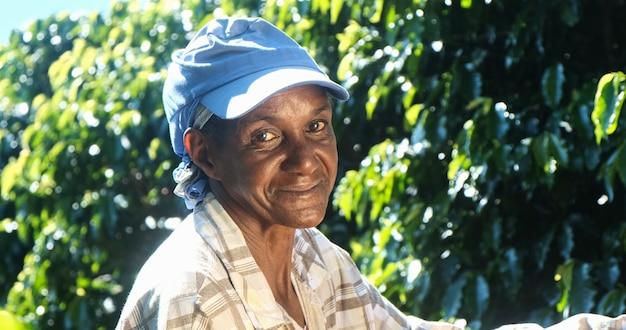 Femme souriante du brésil cueillant des graines de café rouge sur une plantation de café.