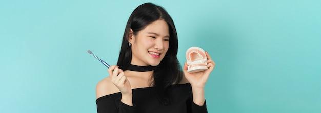 Femme tenant une brosse à dents et un modèle de dents dentaires ou un modèle orthodontique. concept de soins de santé bucco-dentaire.