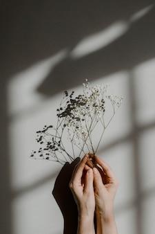 Femme tenant des fleurs blanches sur fond gris