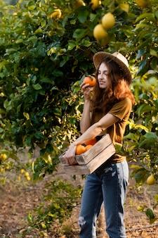 Femme tenant un panier avec des oranges