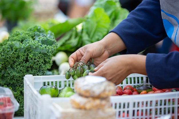 Femme tenant des tomates vertes sur le marché local