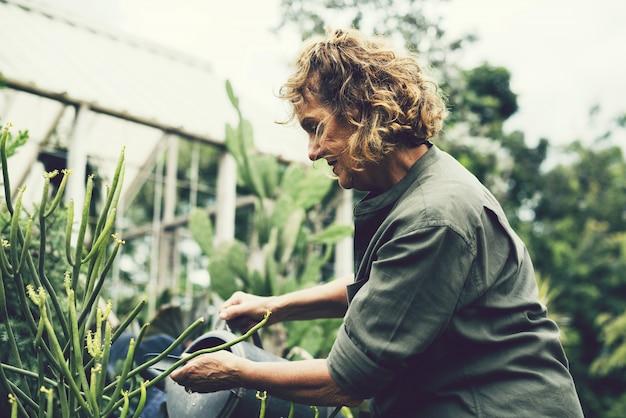 Femme tendant aux plantes dans une serre