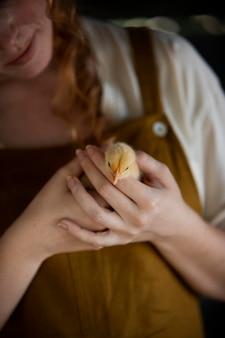 Femme, tenue, poulet, gros plan